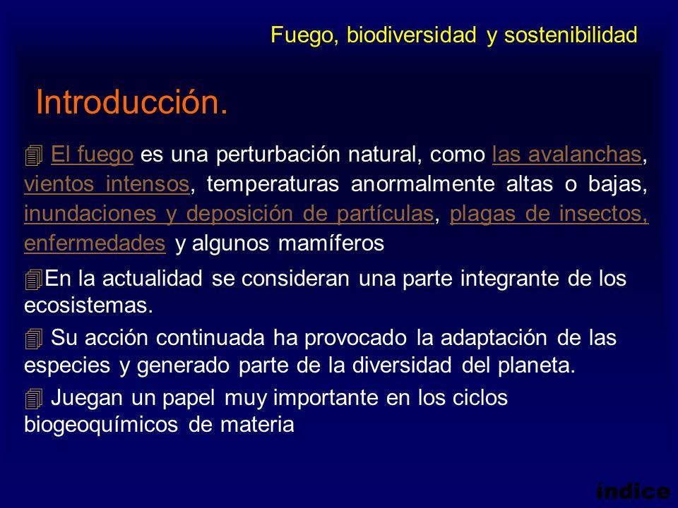 Introducción. Fuego, biodiversidad y sostenibilidad