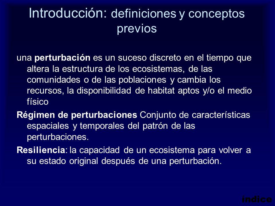 Introducción: definiciones y conceptos previos