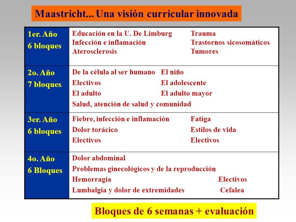 Maastricht... Una visión curricular innovada
