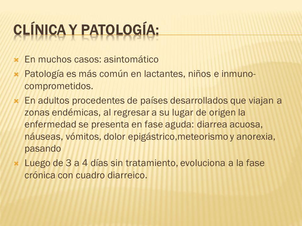 Clínica y patología: En muchos casos: asintomático