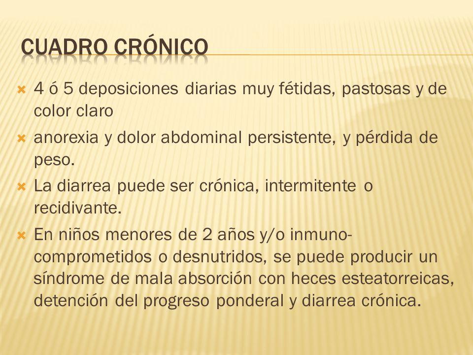 cuadro crónico 4 ó 5 deposiciones diarias muy fétidas, pastosas y de color claro. anorexia y dolor abdominal persistente, y pérdida de peso.