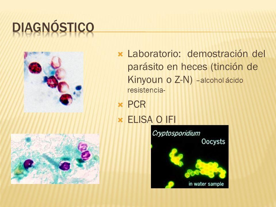 Diagnóstico Laboratorio: demostración del parásito en heces (tinción de Kinyoun o Z-N) –alcohol ácido resistencia-