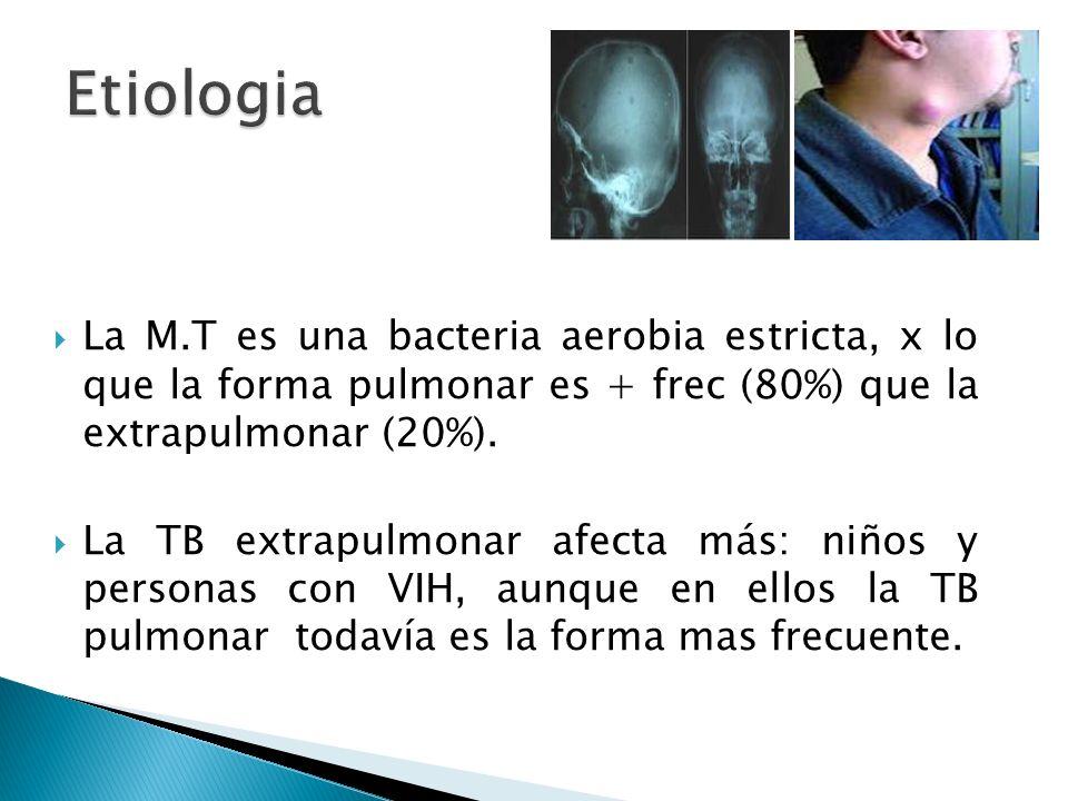 Etiologia La M.T es una bacteria aerobia estricta, x lo que la forma pulmonar es + frec (80%) que la extrapulmonar (20%).