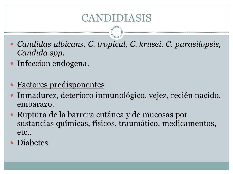 CANDIDIASIS Candidas albicans, C. tropical, C. krusei, C. parasilopsis, Candida spp. Infeccion endogena.