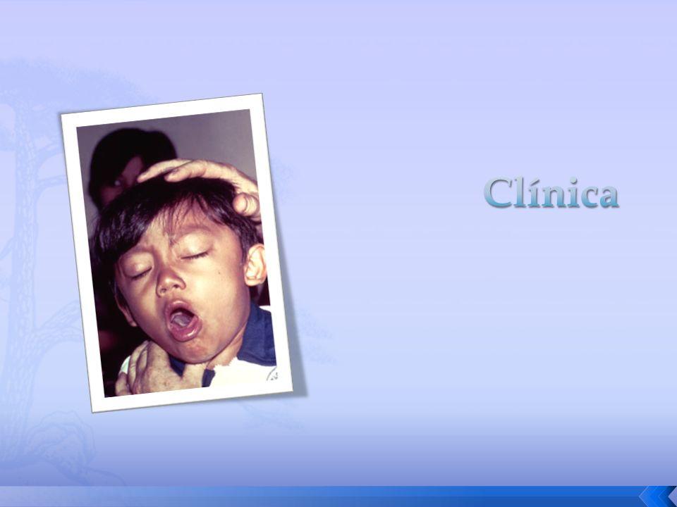 Clínica
