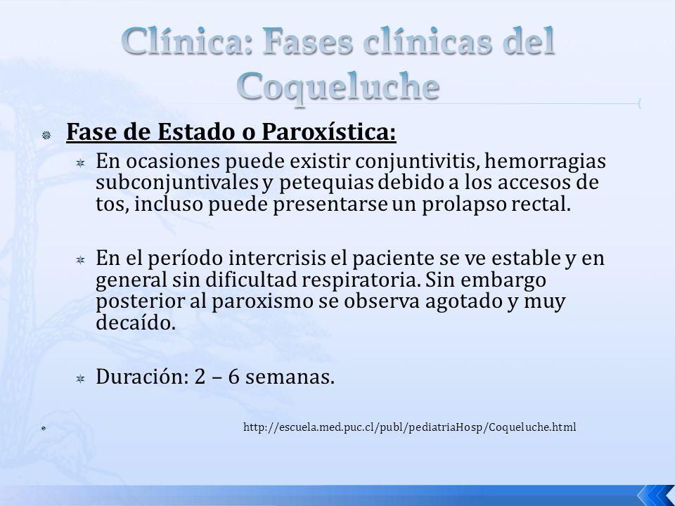 Clínica: Fases clínicas del Coqueluche