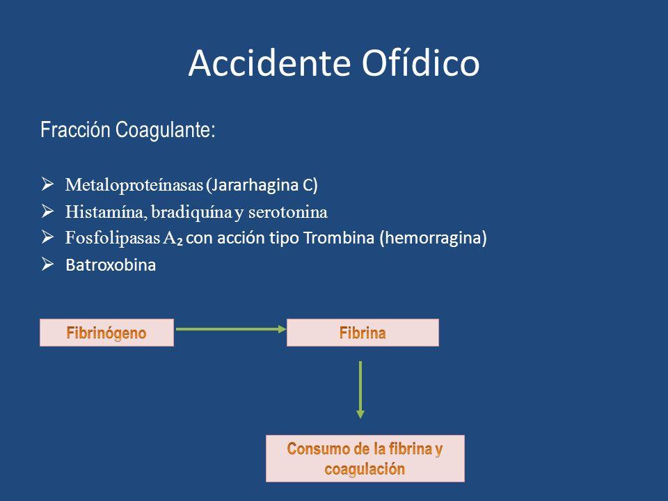 Consumo de la fibrina y coagulación