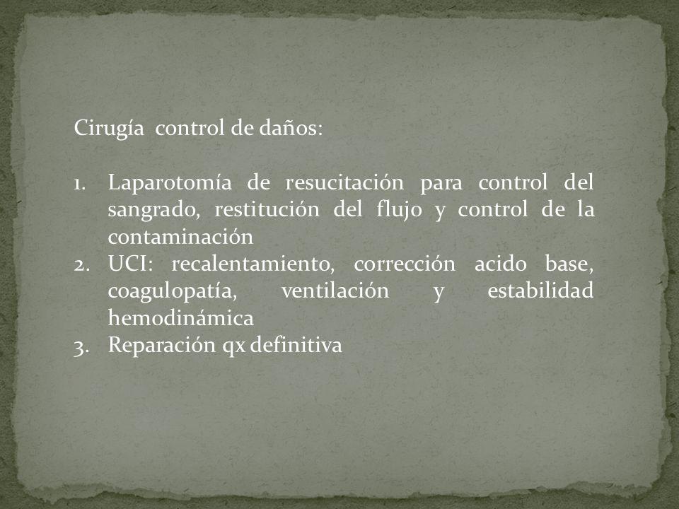 Cirugía control de daños: