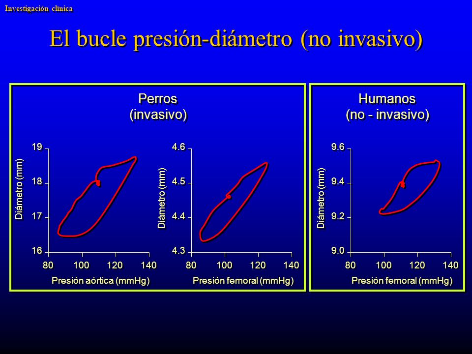 El bucle presión-diámetro (no invasivo)