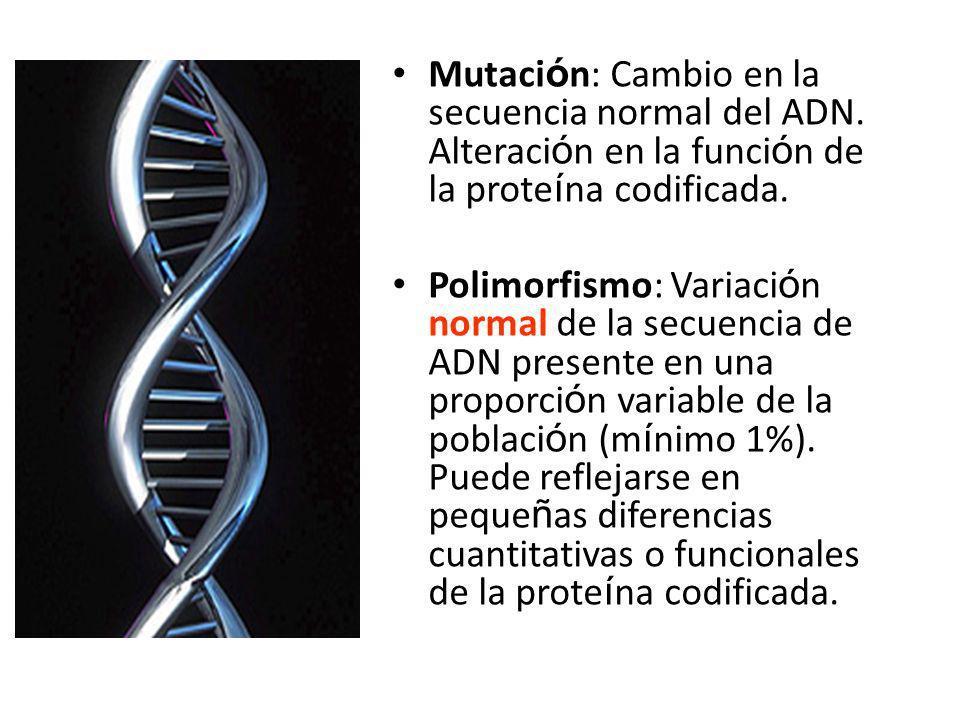 Mutación: Cambio en la secuencia normal del ADN