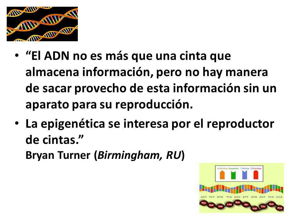 El ADN no es más que una cinta que almacena información, pero no hay manera de sacar provecho de esta información sin un aparato para su reproducción.