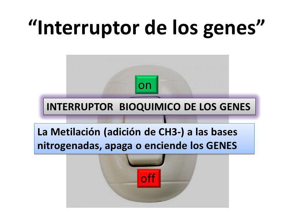 Interruptor de los genes