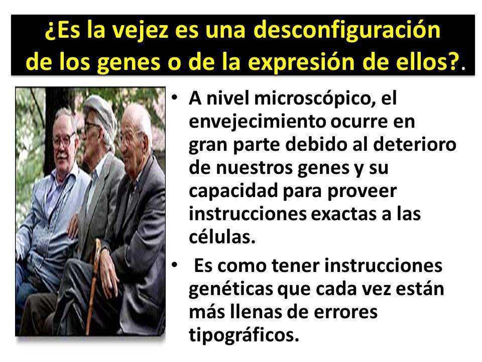 ¿Es la vejez es una desconfiguración de los genes o de la expresión de ellos .