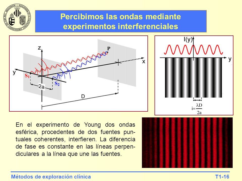 Percibimos las ondas mediante experimentos interferenciales