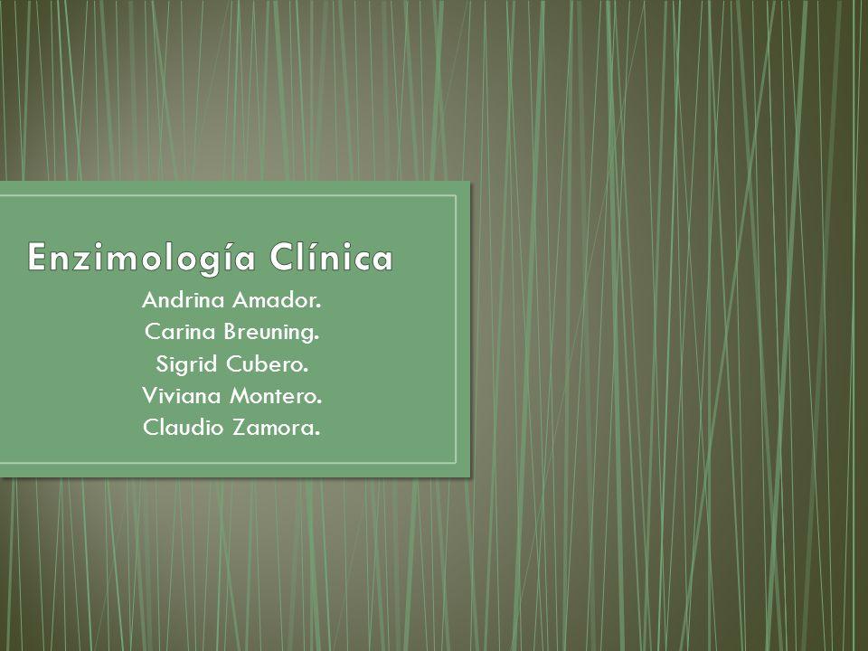 Enzimología Clínica Andrina Amador. Carina Breuning. Sigrid Cubero.