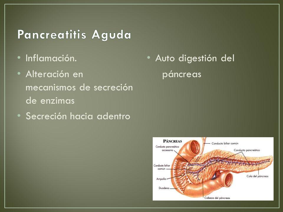 Pancreatitis Aguda Inflamación.