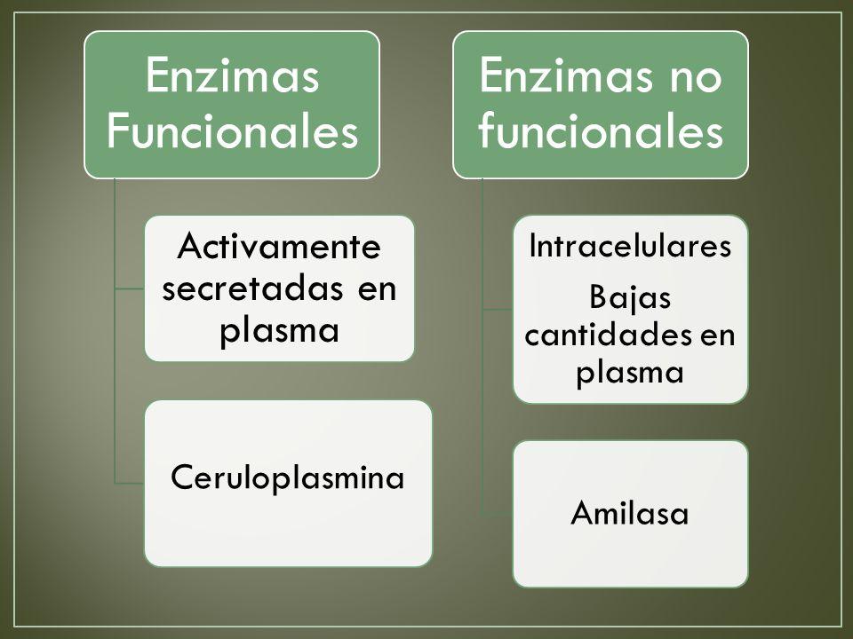 Enzimas no funcionales