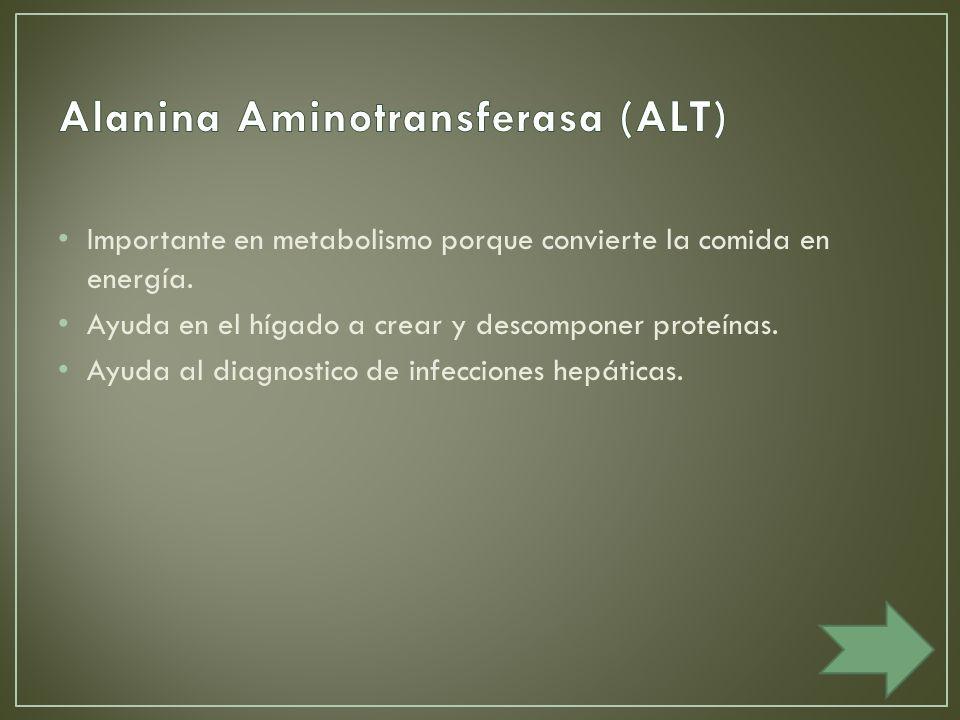 Alanina Aminotransferasa (ALT)