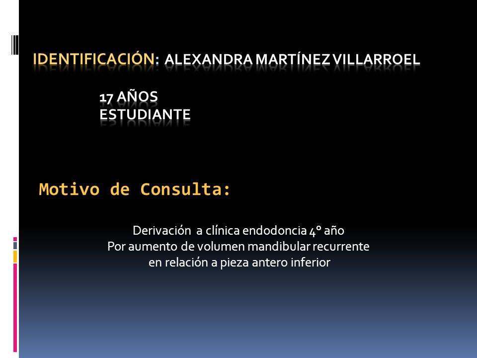 Identificación: Alexandra MartÍnez Villarroel 17 años Estudiante