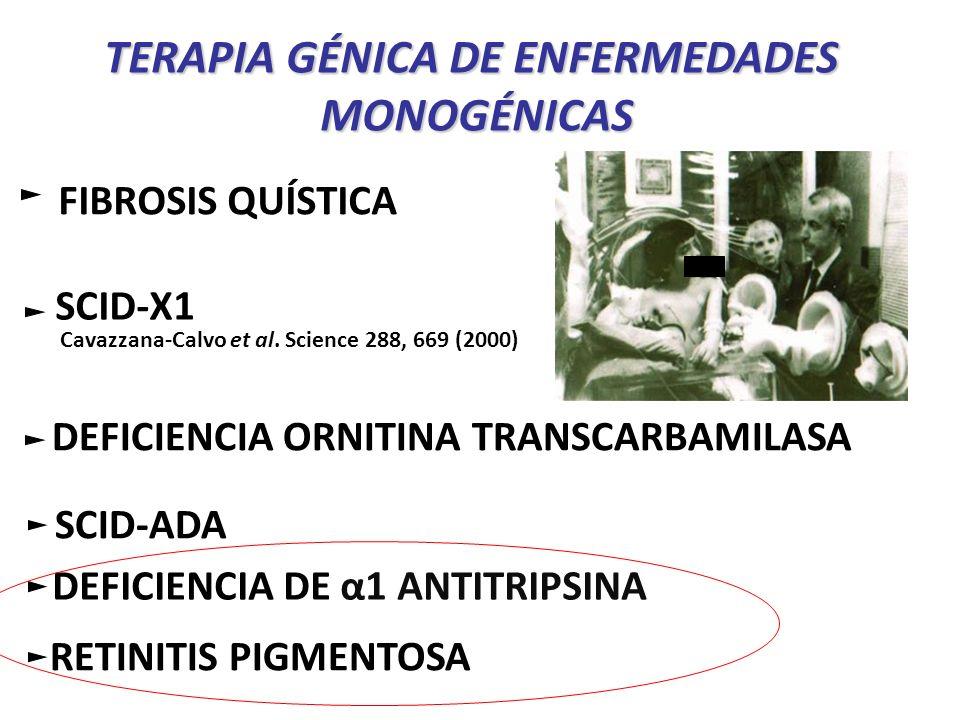 TERAPIA GÉNICA DE ENFERMEDADES