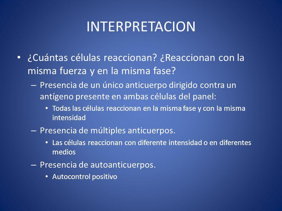 INTERPRETACION ¿Cuántas células reaccionan ¿Reaccionan con la misma fuerza y en la misma fase