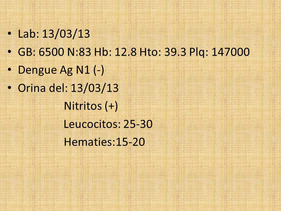 Lab: 13/03/13 GB: 6500 N:83 Hb: 12.8 Hto: 39.3 Plq: 147000. Dengue Ag N1 (-) Orina del: 13/03/13.
