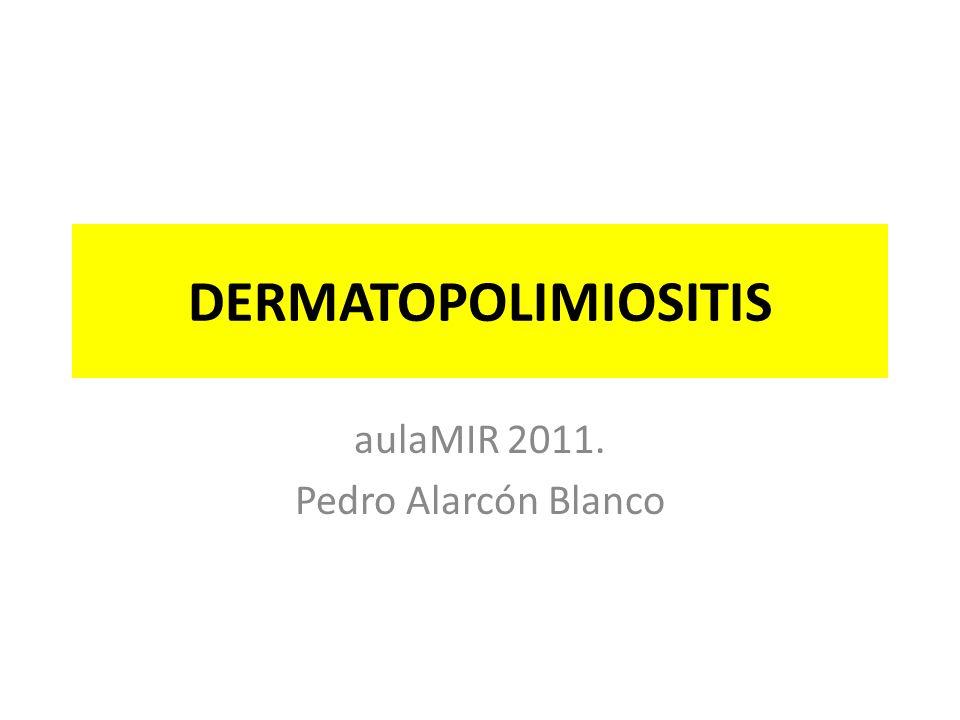 aulaMIR 2011. Pedro Alarcón Blanco