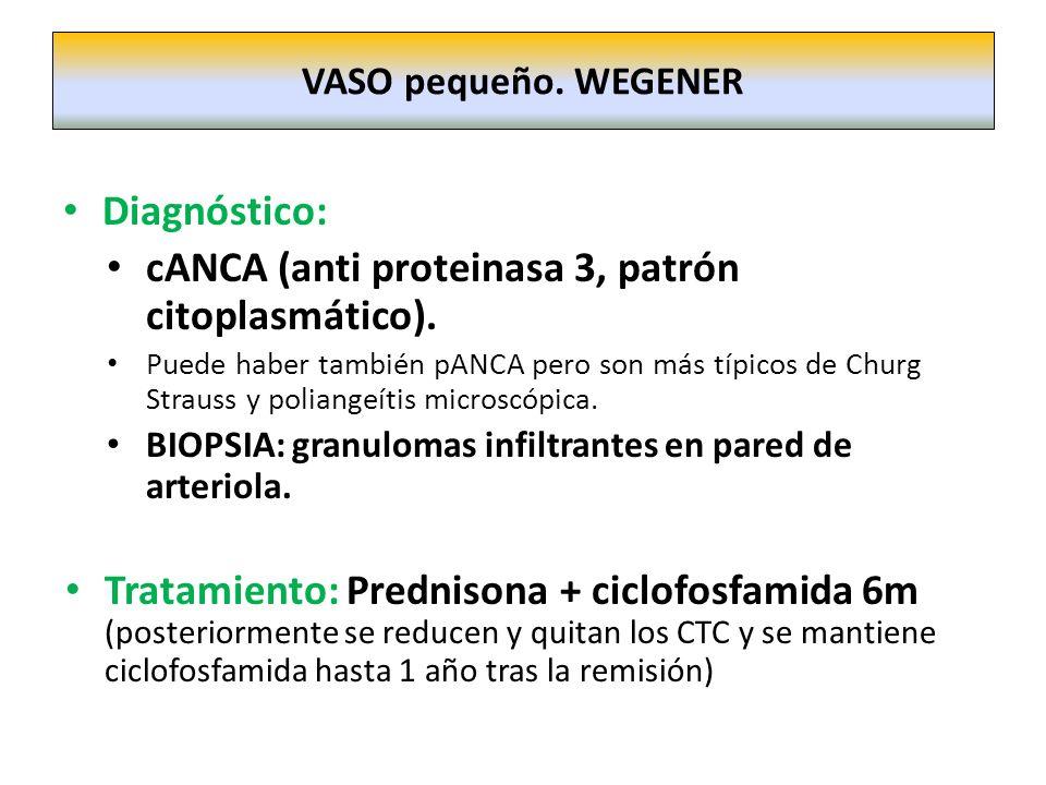 cANCA (anti proteinasa 3, patrón citoplasmático).