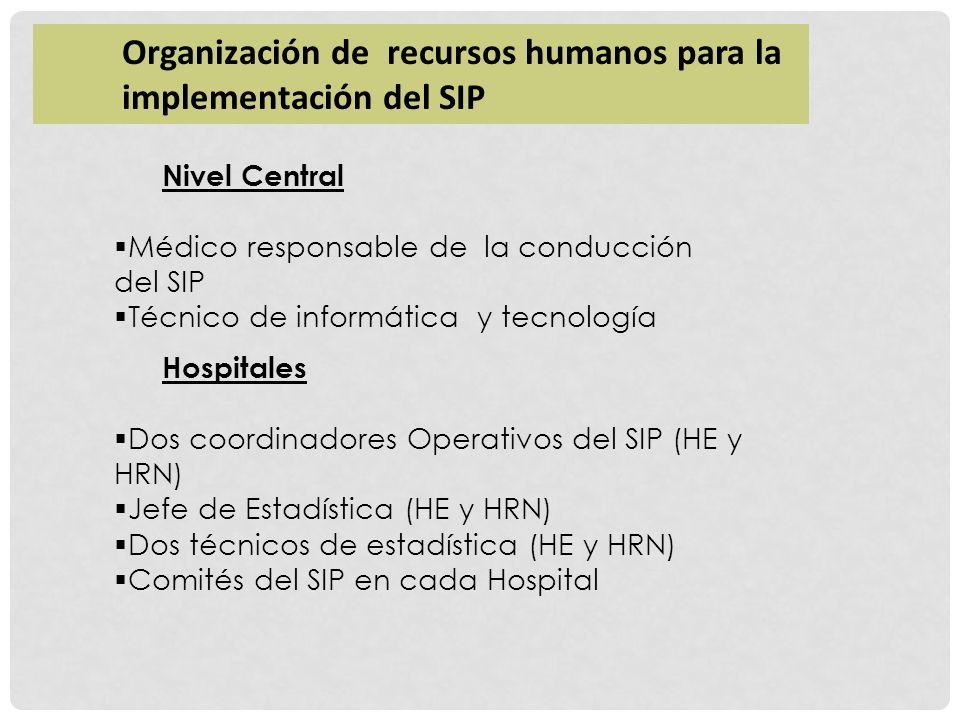 Organización de recursos humanos para la implementación del SIP