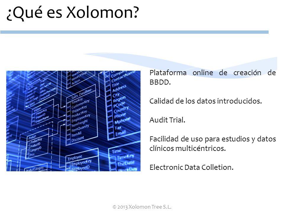 ¿Qué es Xolomon Plataforma online de creación de BBDD.