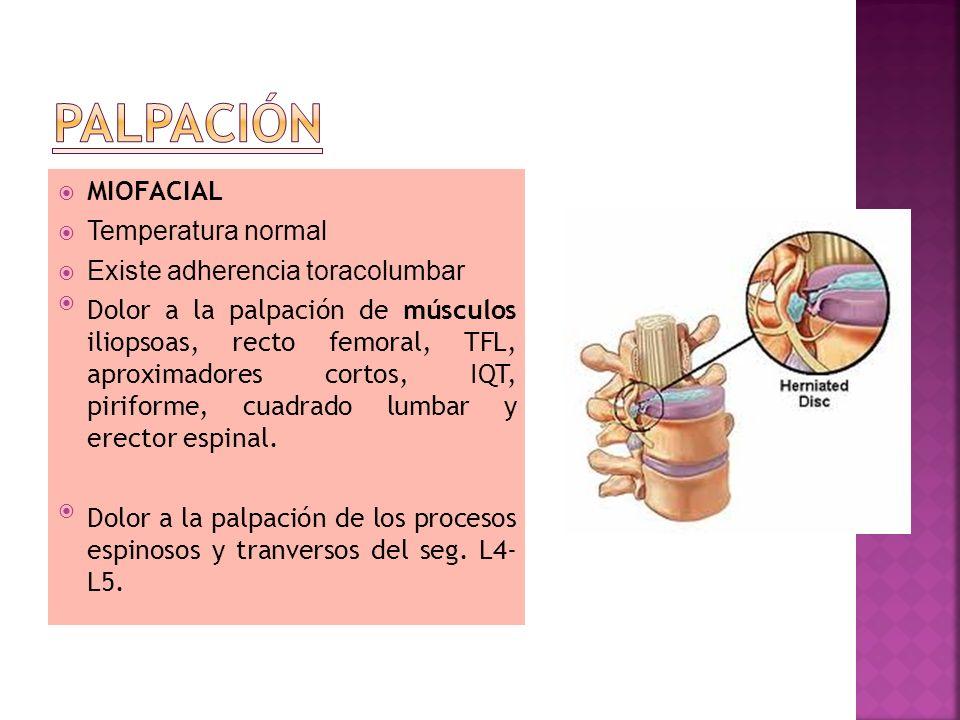 PALPACIÓN MIOFACIAL Temperatura normal Existe adherencia toracolumbar