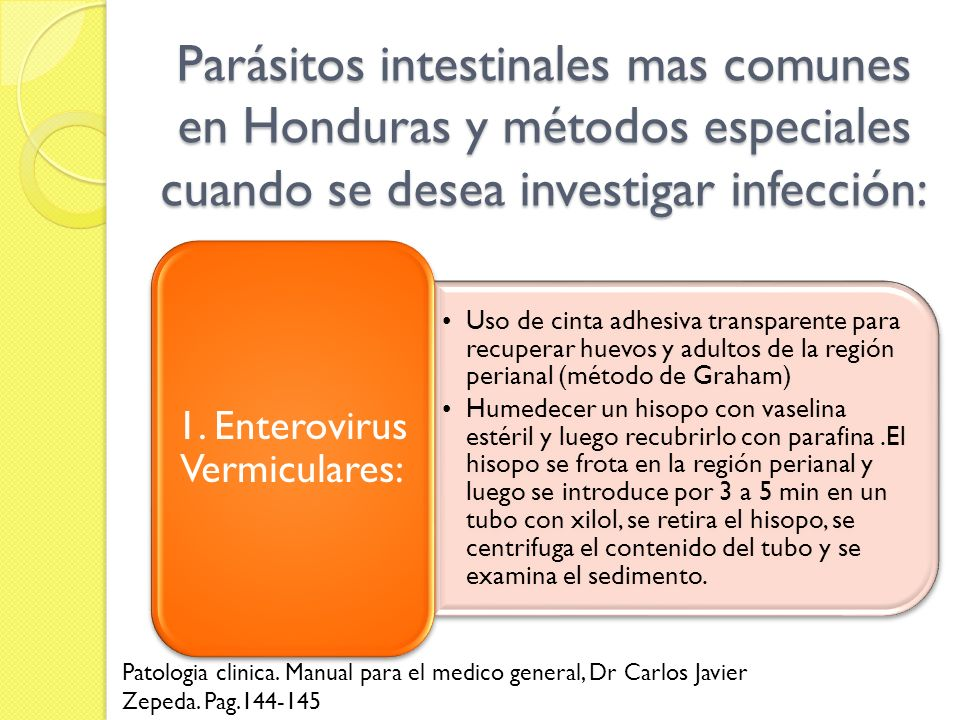 1. Enterovirus Vermiculares: