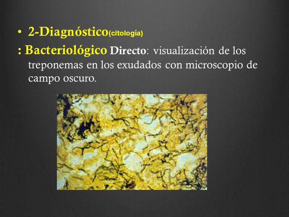 2-Diagnóstico(citología)