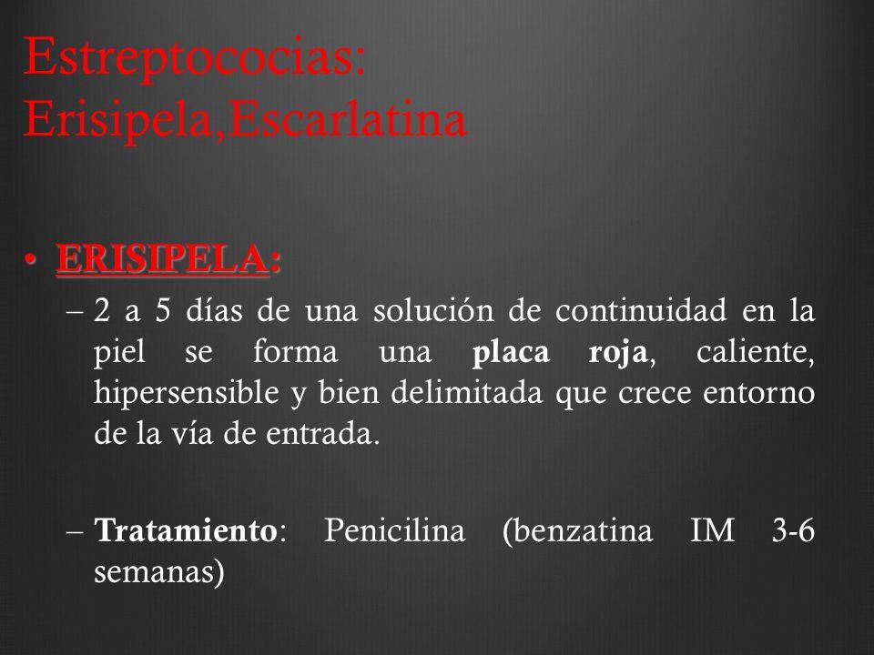 Estreptococias: Erisipela,Escarlatina