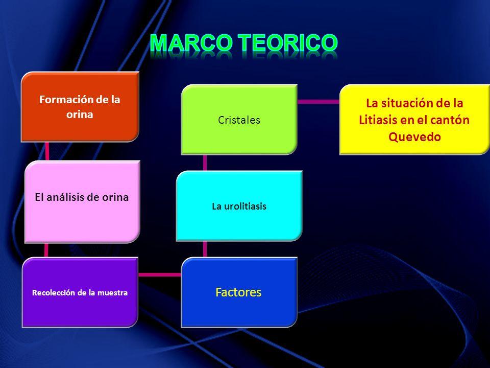 MARCO TEORICO La situación de la Litiasis en el cantón Quevedo