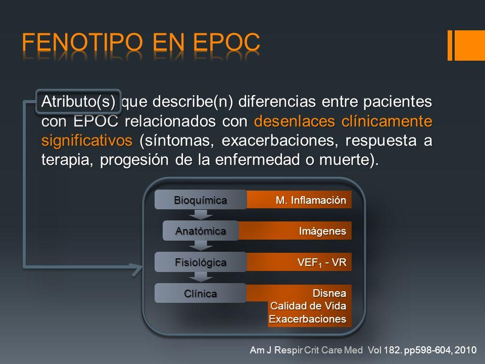 fenotipo en EPOC