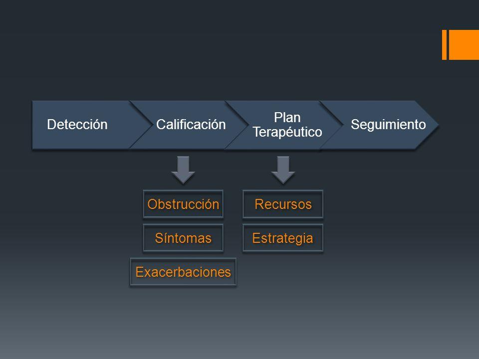 Detección Calificación. Plan Terapéutico. Seguimiento. Obstrucción. Síntomas. Exacerbaciones. Recursos.