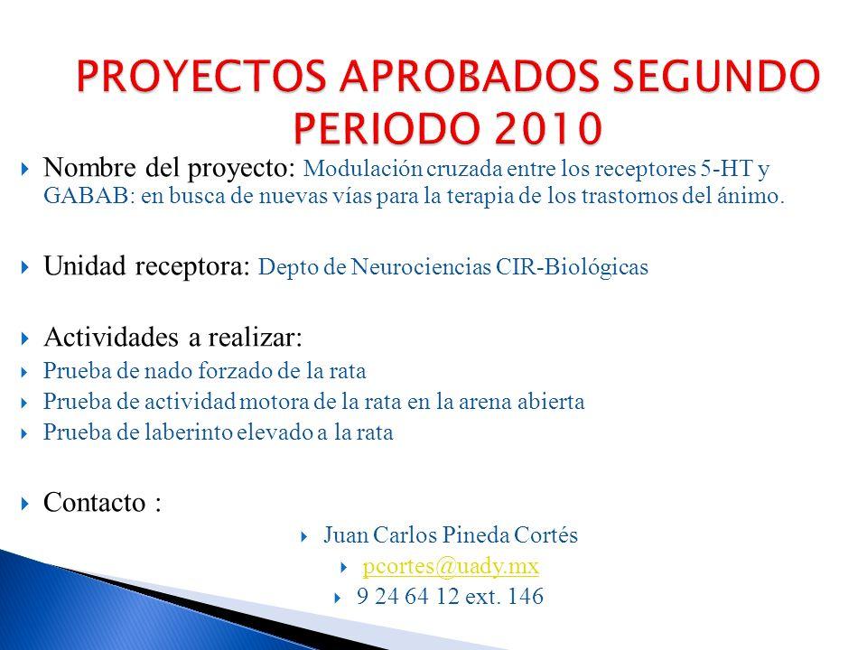 PROYECTOS APROBADOS SEGUNDO PERIODO 2010