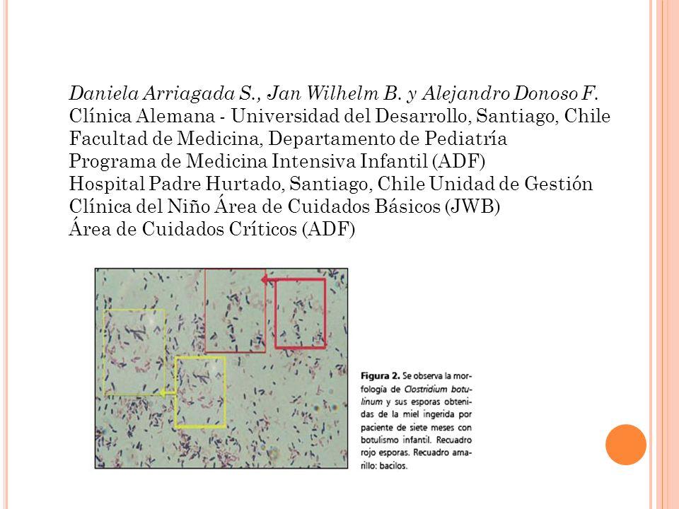 Daniela Arriagada S., Jan Wilhelm B. y Alejandro Donoso F.