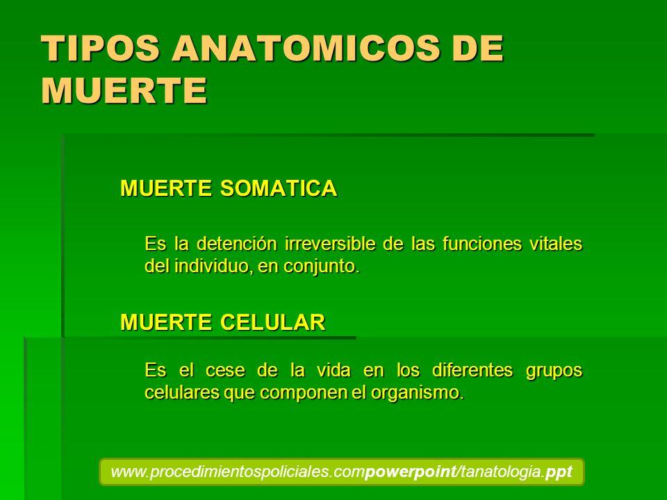 TIPOS ANATOMICOS DE MUERTE