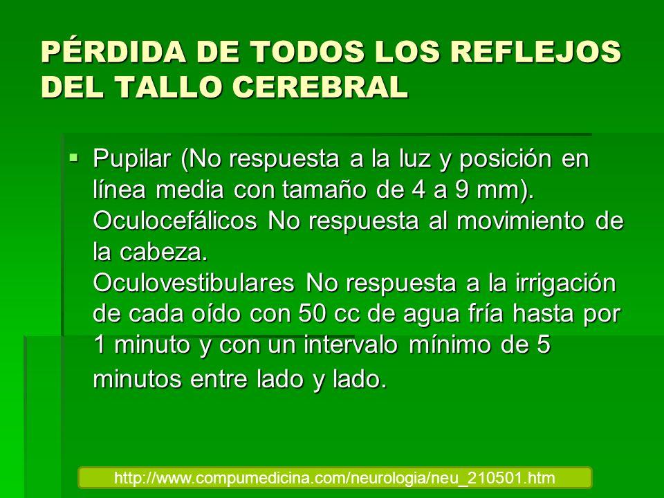 PÉRDIDA DE TODOS LOS REFLEJOS DEL TALLO CEREBRAL
