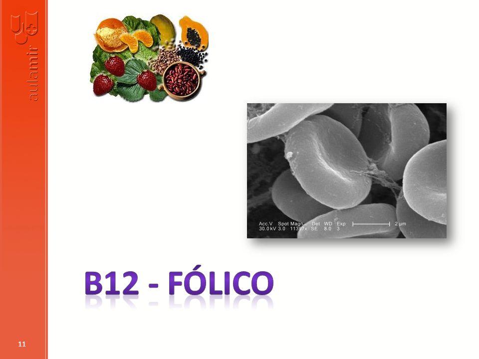 B12 - FÓLICO