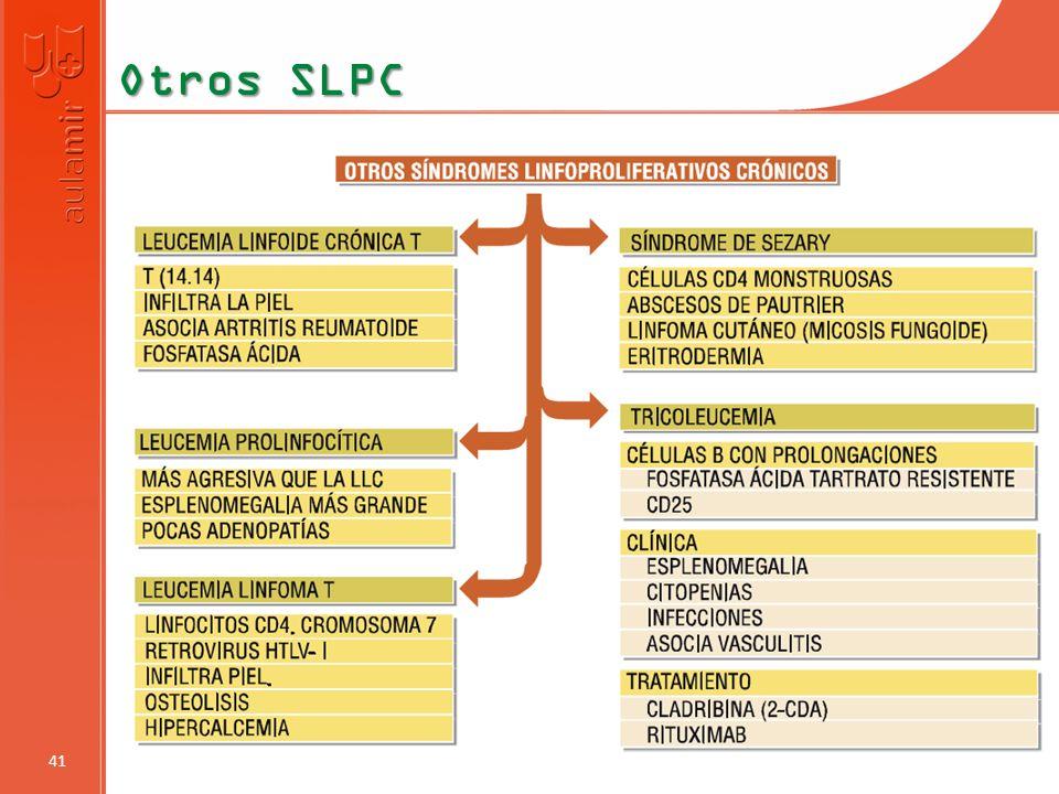 Otros SLPC 41