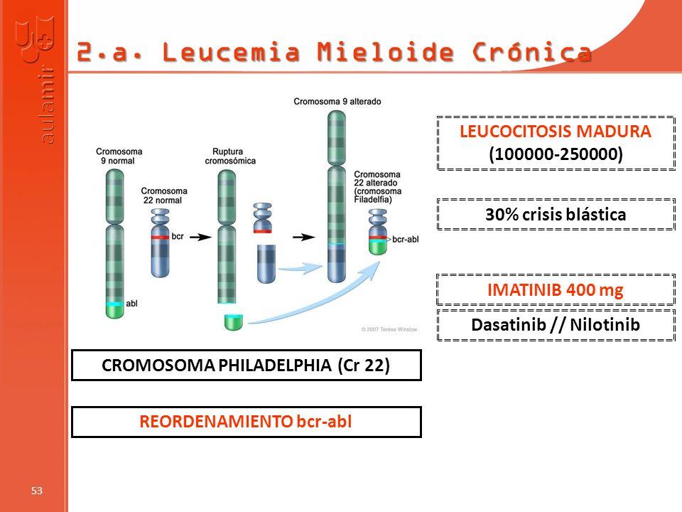 2.a. Leucemia Mieloide Crónica