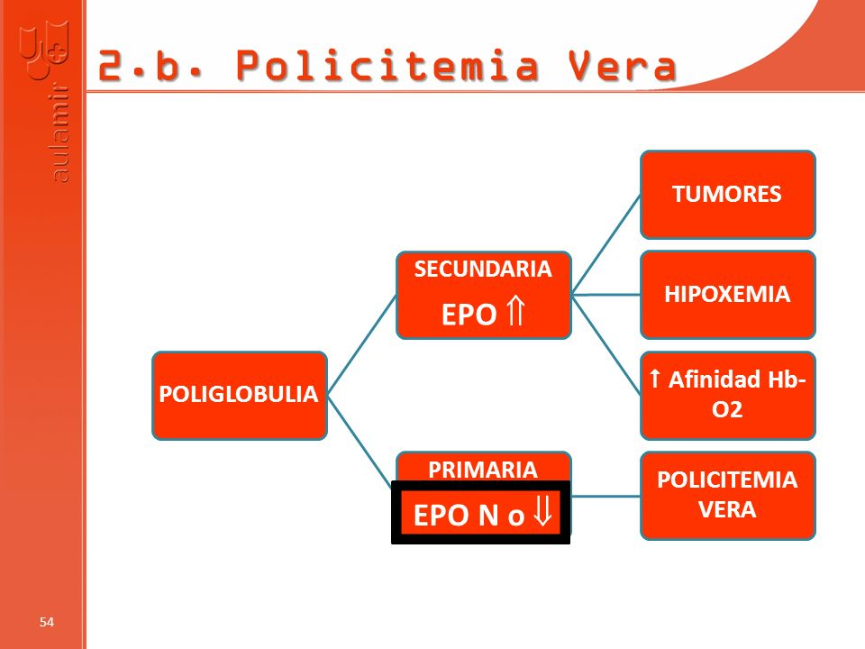 2.b. Policitemia Vera EPO N o  EPO  PRIMARIA SECUNDARIA 54
