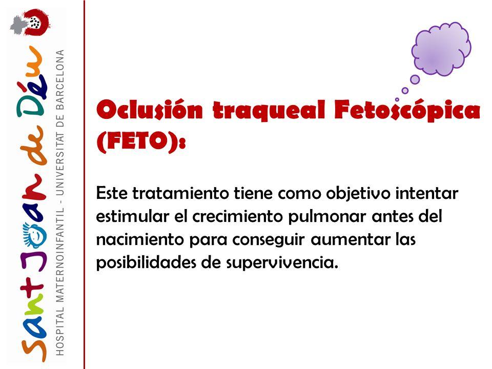 Oclusión traqueal Fetoscópica (FETO):