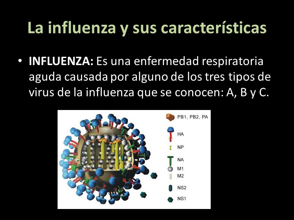 La influenza y sus características