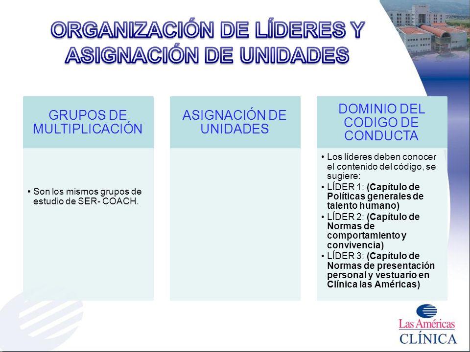 ORGANIZACIÓN DE LÍDERES Y ASIGNACIÓN DE UNIDADES
