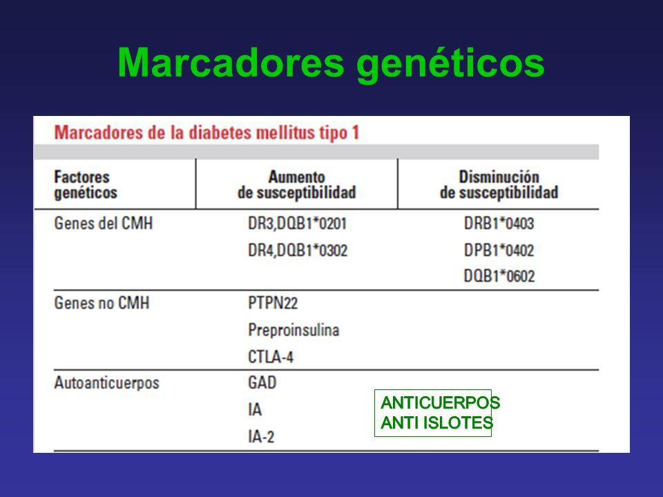 Marcadores genéticos ANTICUERPOS ANTI ISLOTES