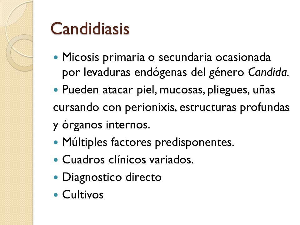 Candidiasis Micosis primaria o secundaria ocasionada por levaduras endógenas del género Candida. Pueden atacar piel, mucosas, pliegues, uñas.